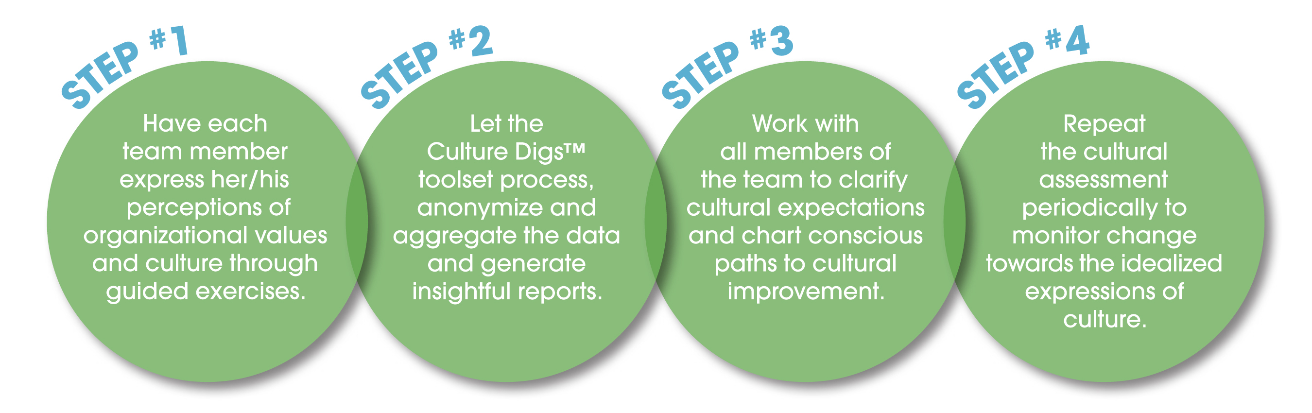 Culture Digs process flow